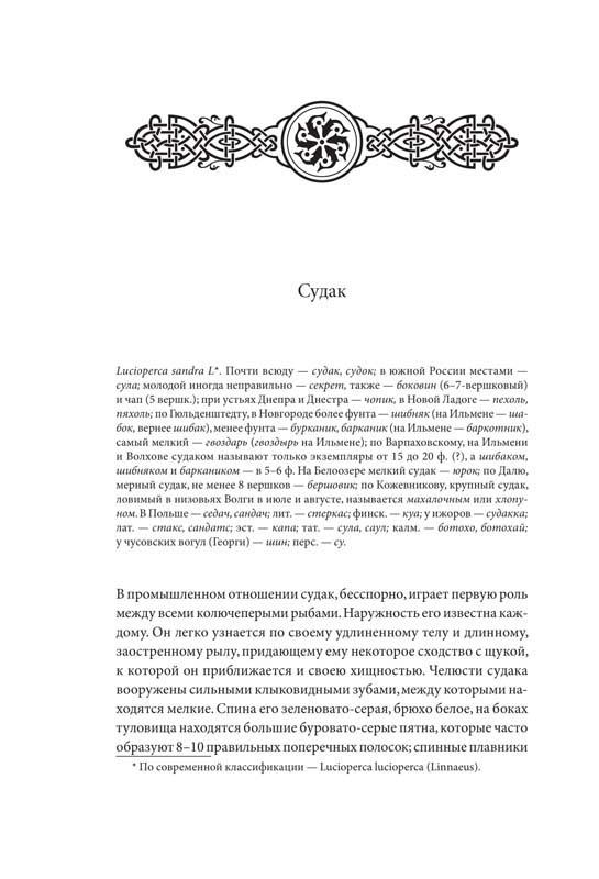 Пример верстки и дизайна книги № 8