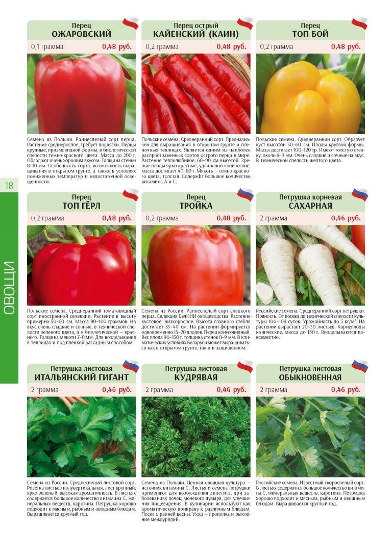 semena Page 18 1 768x1086 - Дизайн и верстка каталогов